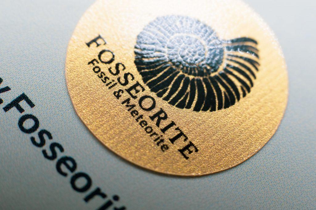 Fosseorite.com Fossil & Meteorite แหล่งรวบรวมฟอสซิล และอุกกาบาตหายากจากทั่วโลก